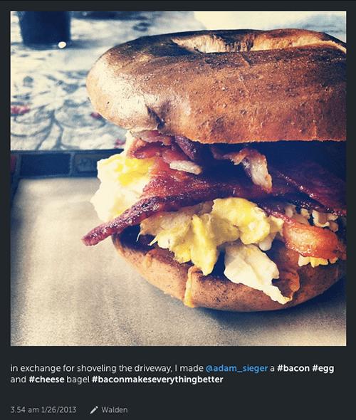 #baconmakeseverythingbetter 1