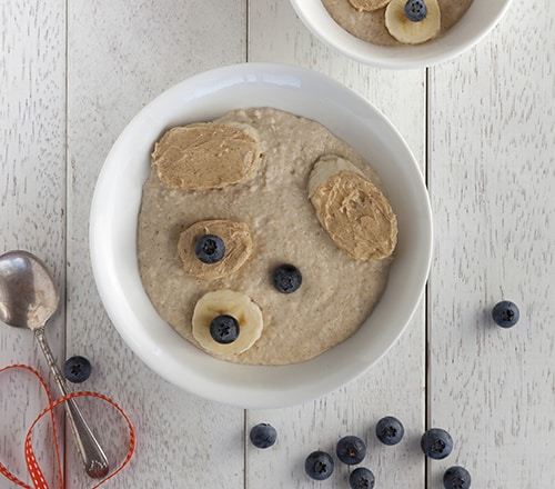 puppy porridge
